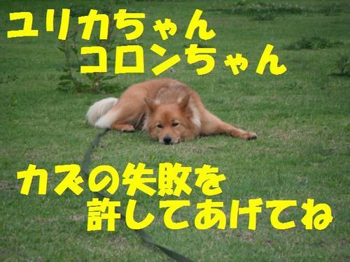 DSCF0071.jpg