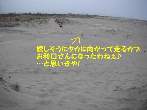 DSCF1378.jpg